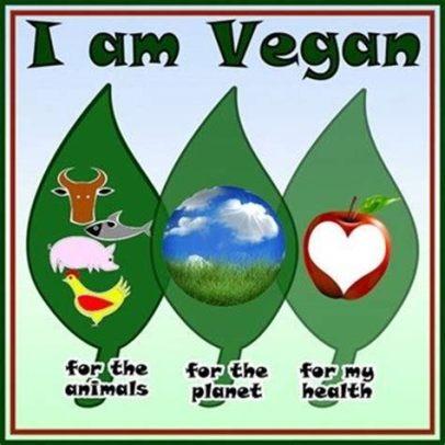 hwf vegan